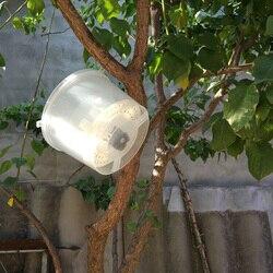 Narzędzia pszczelarskie Hornet traper muchy robaki łapacze pułapki osy łapacz wiszące na drzewie Insectary Box pszczoły i sprzęt pszczelarski|Przybory pszczelarskie|Dom i ogród -