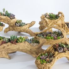 Яблочный сад имитация дерева мульти-мясо цветочный горшок творческий мясо растение цветочный горшок