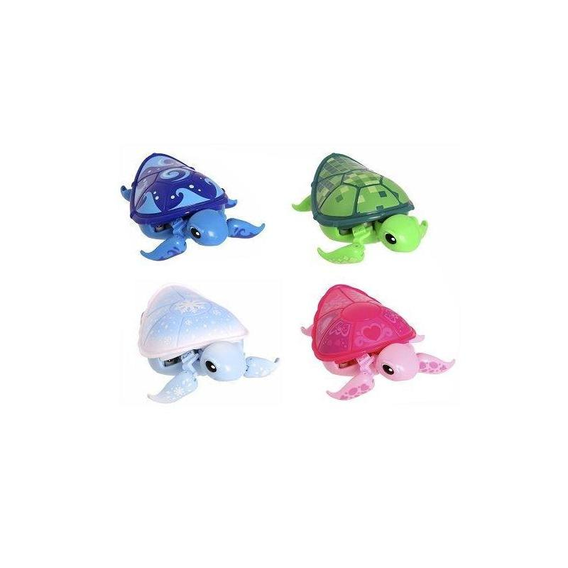 Llp Turtles Molonas S6 Assortment Toy Store Articles Created Handbook