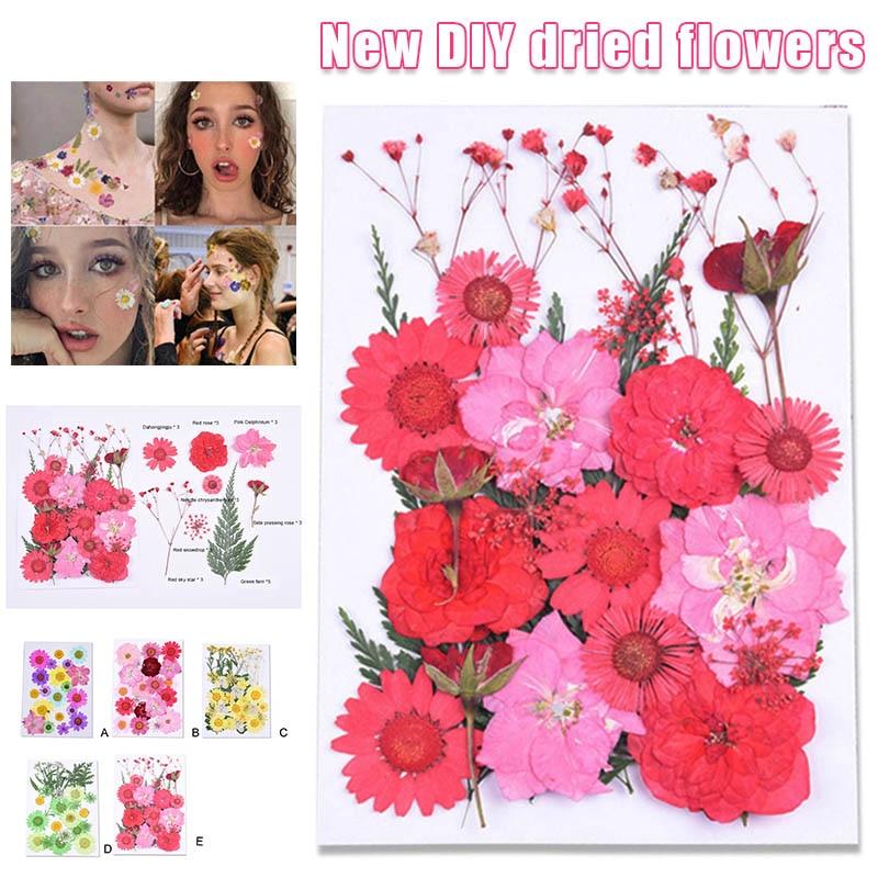 15pcs Mini Natural Real Dried Flowers for DIY Craft Scrapbooking Nail Art