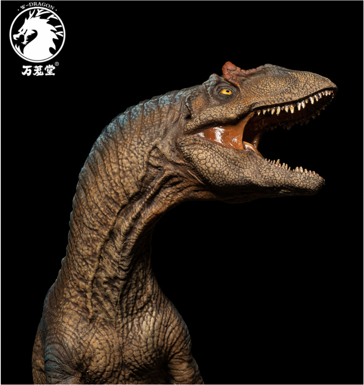 IN STOCK! 2019 W Dragon 1:35 Scale New Special Limited ...