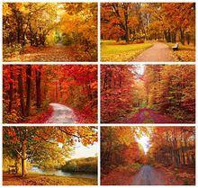 Laeacco Autumn Scenic Backdrops Landscape Yellow Forest Maple Trees Leaves Road Photography Backgrounds Baby Portrait Photophone