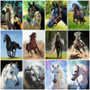 HUACAN Painting By Numbers Horse DIY Hand Painted Picture By Numbers Animals Gift Home Decoration Wall Art