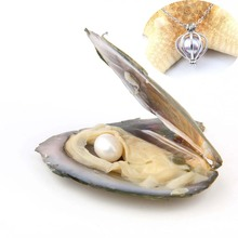 Natural Pearl Freshwater Cultured Pearl Oyster with Rice 7-8 mm Love Wish and Nacklace Set (Chain 55cm) 10pcs 100% natural pearl full hole cultured freshwater white rice pearl beads 7 8 mm
