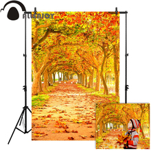 Allenjoy autumn photophone backgrounds for photography studio tree orange path leaves backdrop photo photocall new
