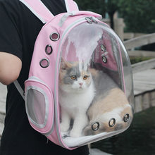 Transparent Collapsible Pet Cage For Cats Dogs Crate Handbags Tote Transport Cat Accessories Puppy Kitty Portable Supplies Cages