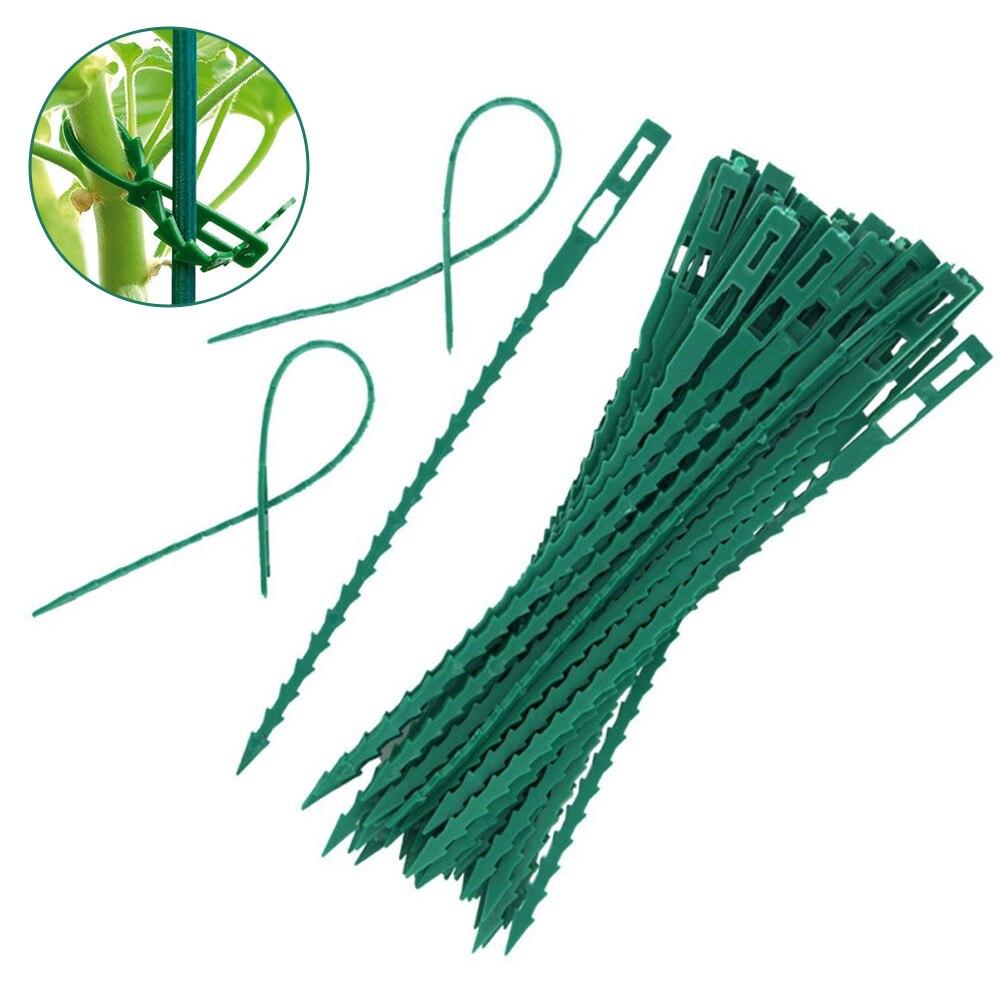 50Pcs Adjustable Garden Plant Twist TiesReusable Garden Plastic Plant Belt Ties Tie Garden Fishbone Band Tools Plant SupportTies