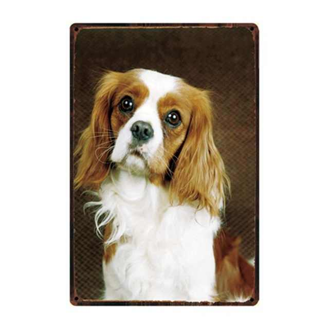 Cane Regole Bulldog Boxer Beagle Great Dane Segni In Metallo Bella Latta Poster Complementi Arredo Casa Pub Bar Giardino Wall Art di Ferro di Latta pittura