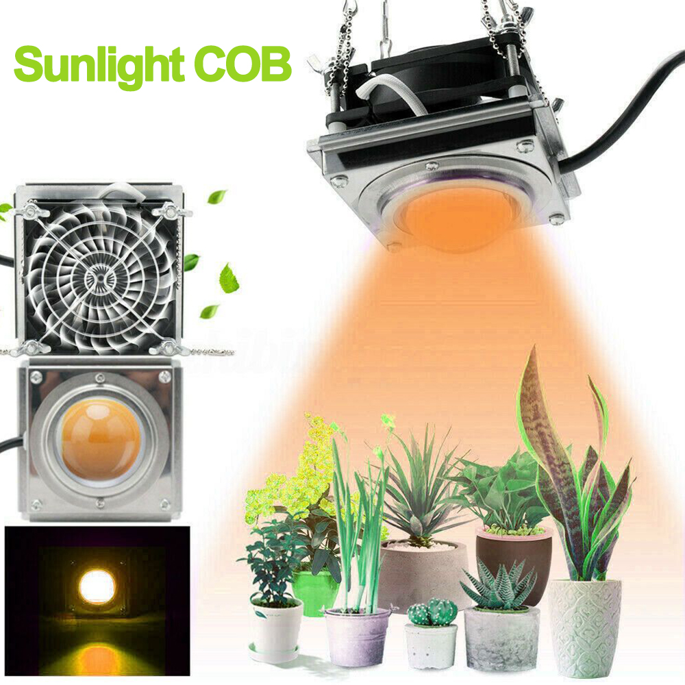 Led Crece La Luz De Espectro Completo 60W 4000K Cob Led Grow Light Full Spectrum LED Growing Lamp Indoor Plant Growth Fitolampy