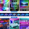 USB LED Strip Lights WS2812 Dream Color 5M 10M 15M 20M SMD 5050 RGB Ribbon Lights Flexible LED Lamp Tape TV BackLight Diode Tape