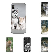 Transparent Soft Cases Covers Baby Wolf Wallpapers For Samsung Galaxy S3 S4 S5 Mini S6 S7 Edge S8 S9 S10 Plus Note 3 4 5 8 9(China)