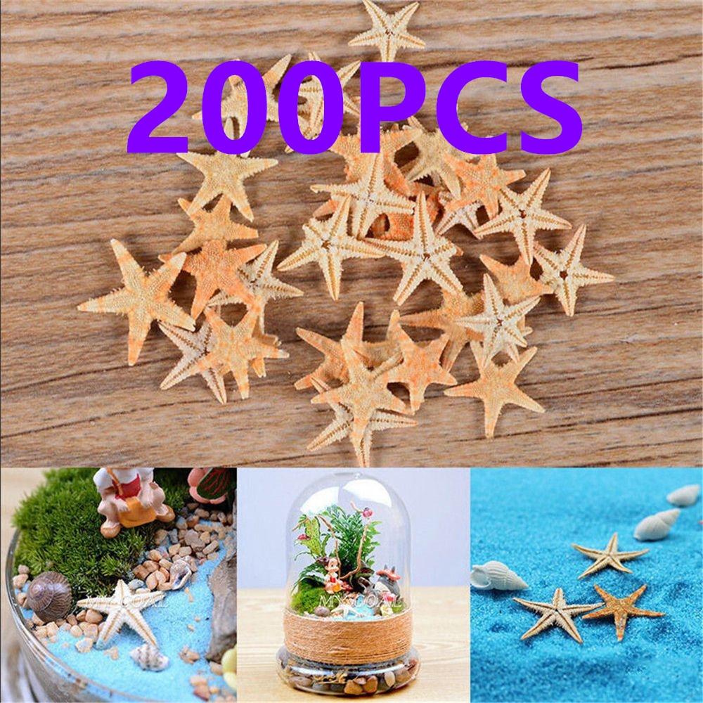 200Pcs/Set Cute Mini Starfish Sea Star Shell Beach Fairy Garden Figurines Miniatures Home Micro Miniatures Accessories Decor