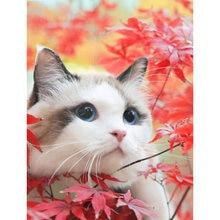 Полностью квадратный/круглый diy Алмазный вышитый милый кот