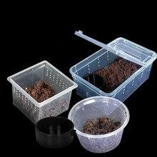 1 шт., альпинистский питомец, рептилия коробка для разведения террариума, дом, коробка, паук, лягушка, ящик для насекомых, черепаха, анти-спасательная коробка для разведения