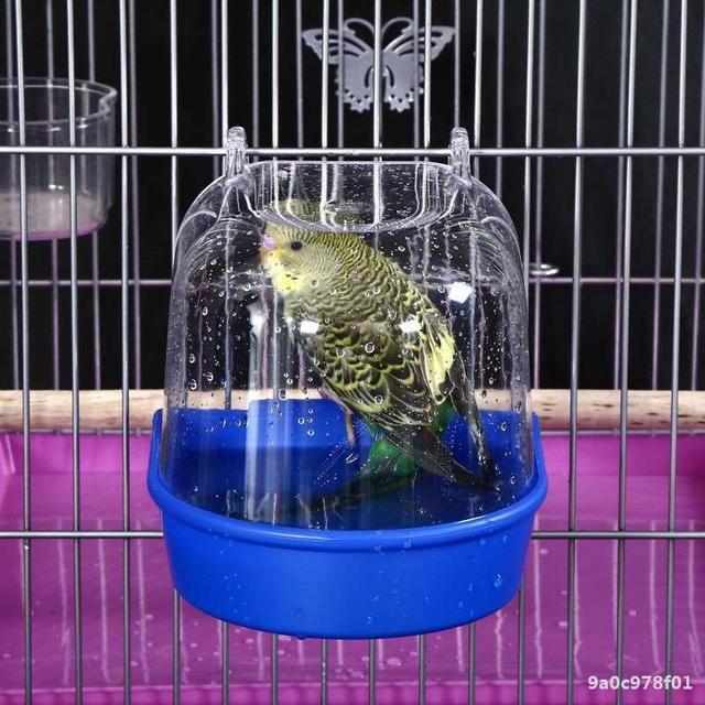 Bird Bath Water Box For Parrots - Parakeets - Lovebirds - Finches  2