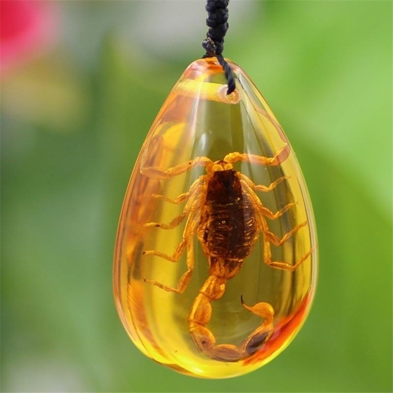 Pedra natural do inseto escorpião natural inclusão genuíno báltico pingente colar especial presente