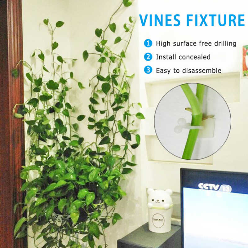 2020 Invisible Wall Rattan Clamp Clip Rattan Fixed Clip Bracket Plant Stent Supports Invisible Wall Vine Climbing Sticky Hook