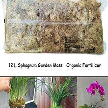 Flower-Pot Roots Organic Fertilizer Protect-Orchid-Succulent Sphagnum Moss Plant Nutrition