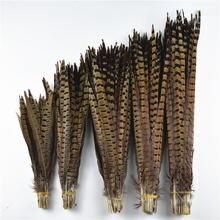 Оптовая продажа 100 шт/лот натуральные перья хвоста фазана ringneck