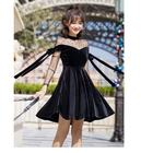 Vintage Velvet Dress...