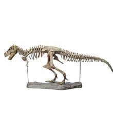Large assembled dinosaur fossil puzzle toy children model Tyrannosaurus Rex skeleton teaching pieces of building blocks
