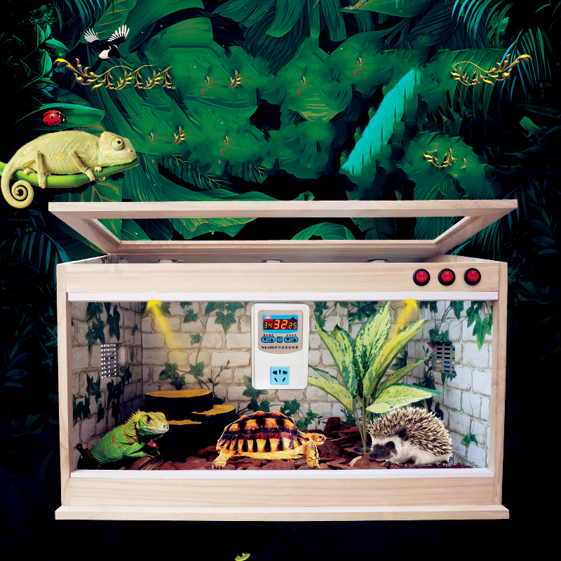 Heating Insulation Box For Lizards, Spiders, Palaces, Living Hamsters, Tortoises And Reptiles