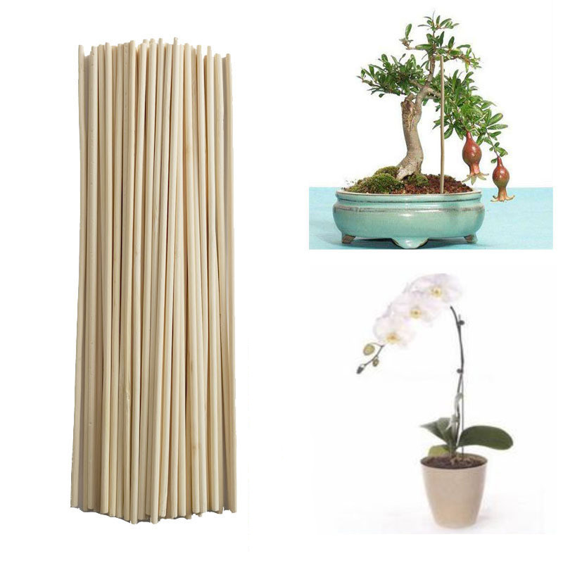 50pcs! Wooden Plant Grow Support Bamboo Plant Sticks For Flower Stick Cane Stands Agriculture Garden Bonsai Tool