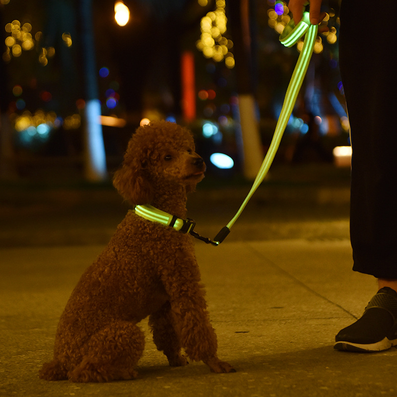 Pet Dog Shining Traction Set Dual Fiber Sling Neck Ring Night Light Set