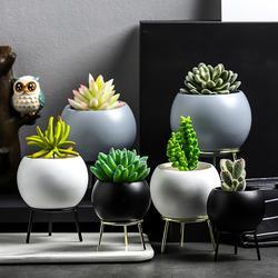 Европейский керамический цветочный горшок, полка для цветов, белая керамика, суккулент, кактус, растение, шестигранные горшки с металлическ...