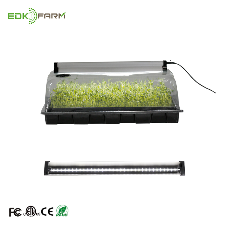 Propagation Starter Kit Holes Seeds Sprout Hydroponic Grow Systems