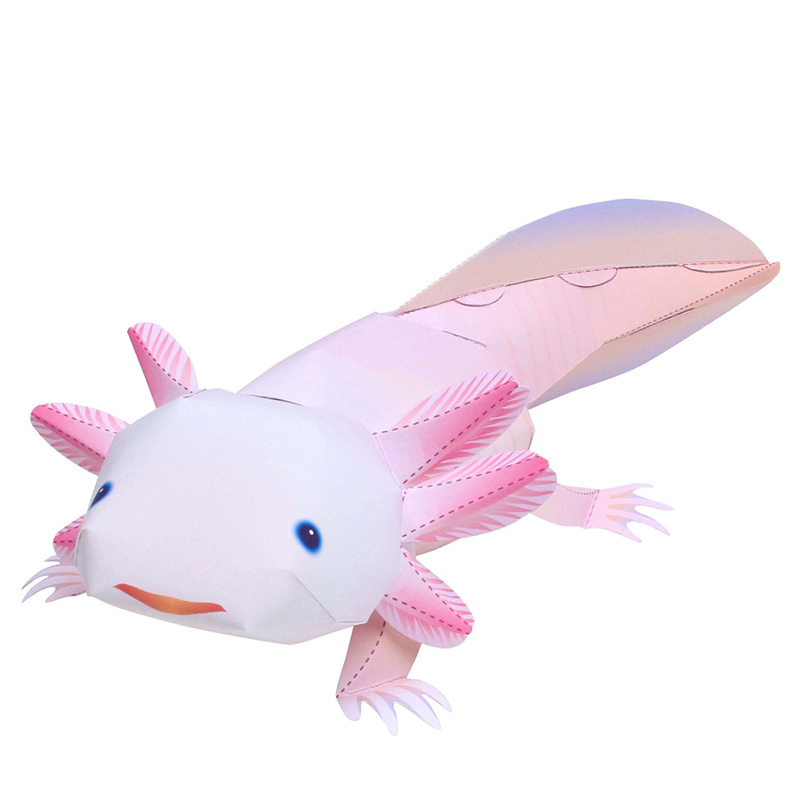 Axolotl Folding Cutting Mini Cute 3D Paper Model Papercraft Amphibians Animal Figure DIY Kids Adult Craft Toys QD-041