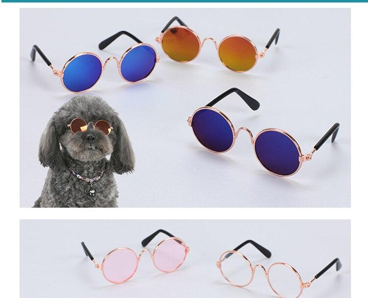 宠物眼镜_厂家直销宠物眼镜-猫咪太阳镜个性搞怪-猫批发---阿里巴巴_08