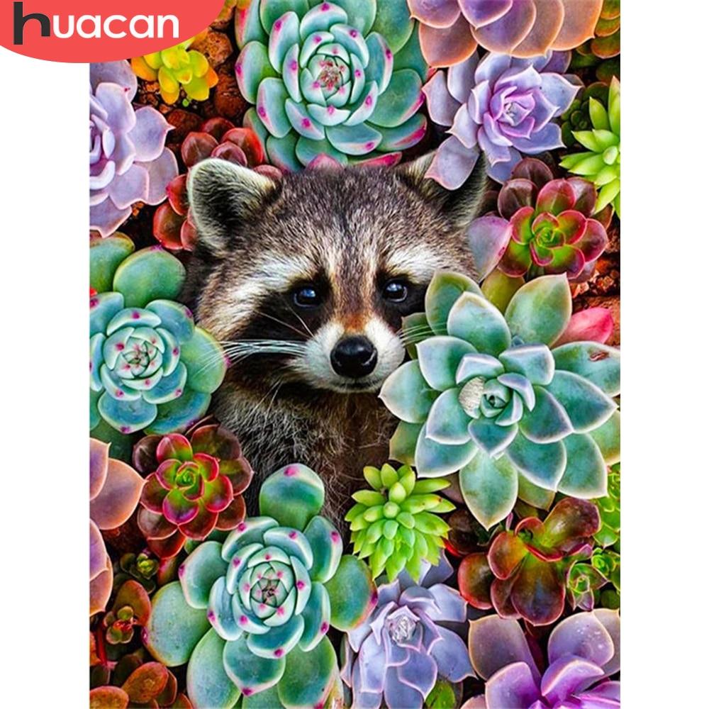 HUACAN – peinture diamant de plantes succulentes, broderie complète 5D, carrée ou ronde, bricolage, mignon, raton laveur, Animla, cadeau fait à la main