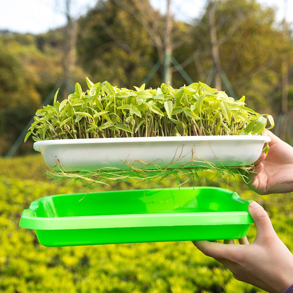 Plastic Nursery Pots, Seed Sprout Tray, PP, Soilless, Large Capacity, For Wheat Grass Growing, Sprout Tray, Hydroponic Plate
