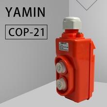 цена на P218 Rain Proof Hoist Crane Pendant Control Station AC250V 2.2kw Push button Switch Up-Down two buttons COP-21