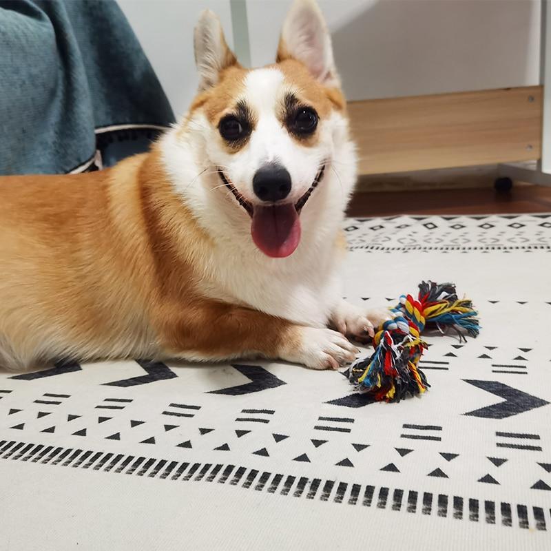 1 шт. веревка для кусания собак, игрушки для домашних животных, товары для собак, щенков, хлопковая игрушка для жевания с узлом, прочная плетеная веревка для костей, Забавный инструмент, случайный цвет-4