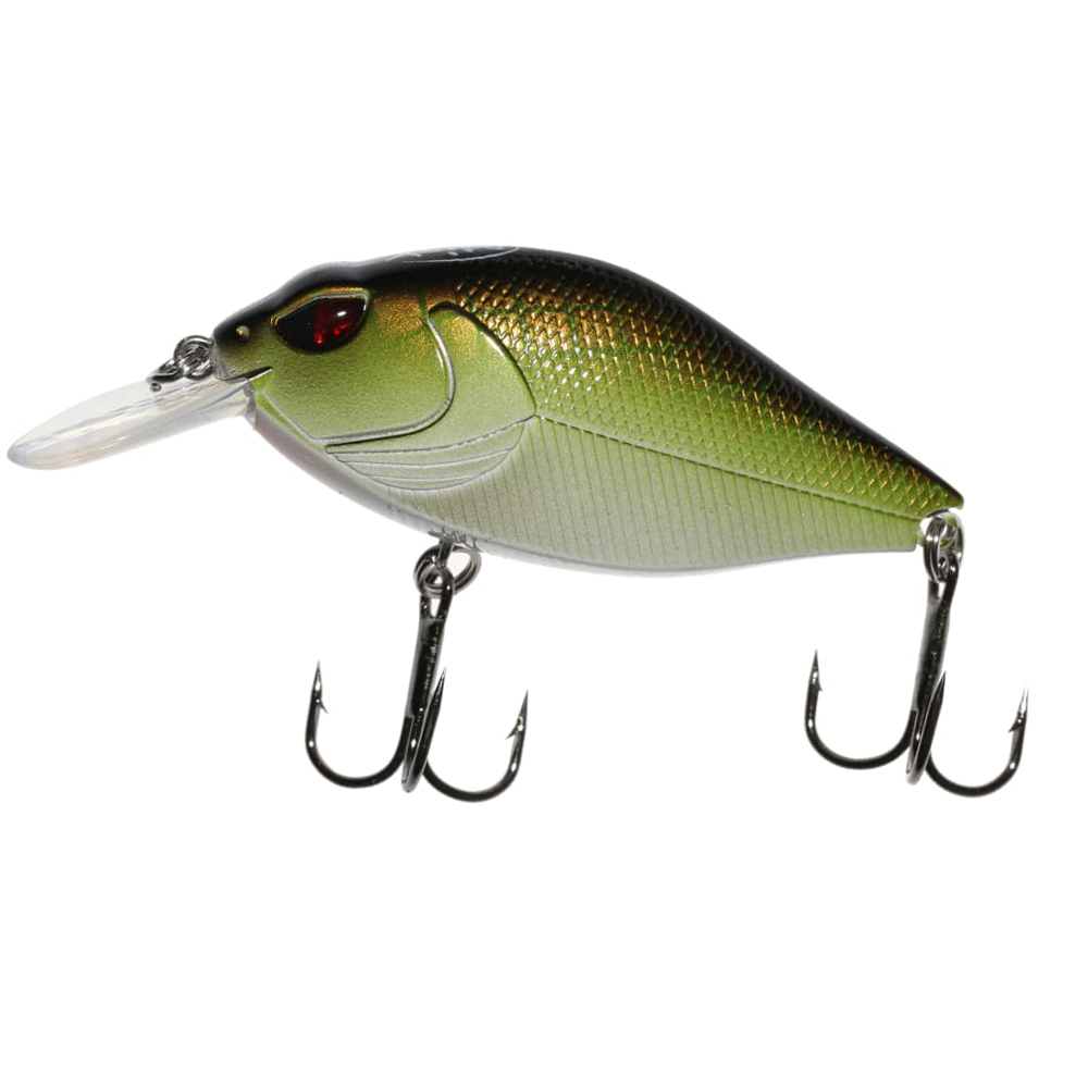 5 Assorted Rattling Diving Minnow Plug Lures Great For Pike Perch Bass Fishing