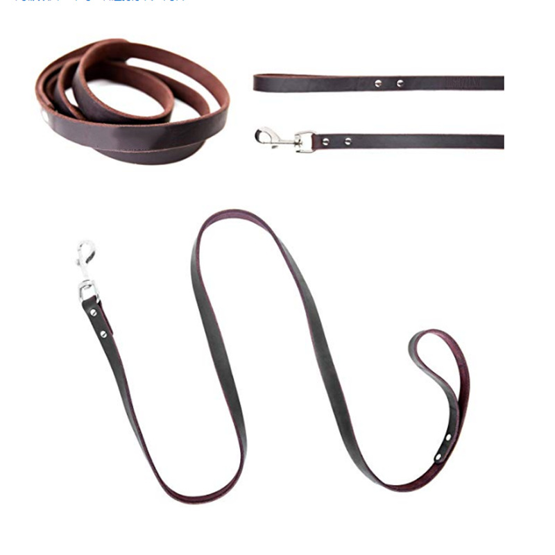 Pet Collar Traction Belt Set Dog For Hand Holding Rope Durable Buffer Proof Punch Dog Traction Rope
