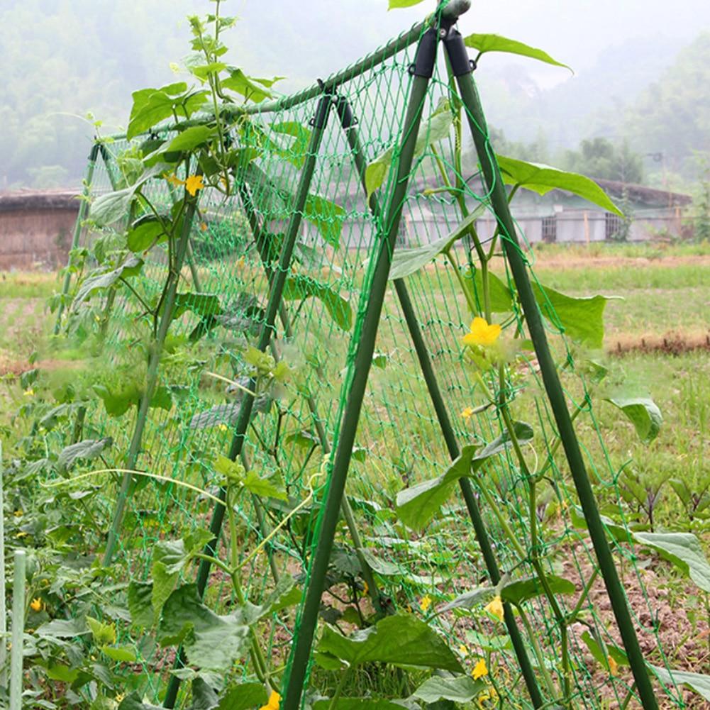 1.8x1.8m Home Nylon Easy Apply Mesh Practical Bitter Melon Cucumber Vine Flowers Plants Climbing Garden Net