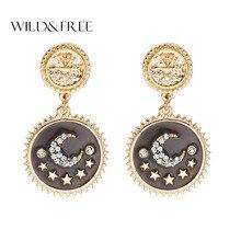 Wild& Free винтажные массивные круглые серьги со свисающими монетами Луна Звезда кристалл серьги для женщин вечерние ювелирные изделия