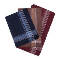 Etteggy men's handkerchief (set of 12 PCs) 45447d 1726