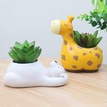 1 шт суккулентные растения горшок и милые носки с рисунками