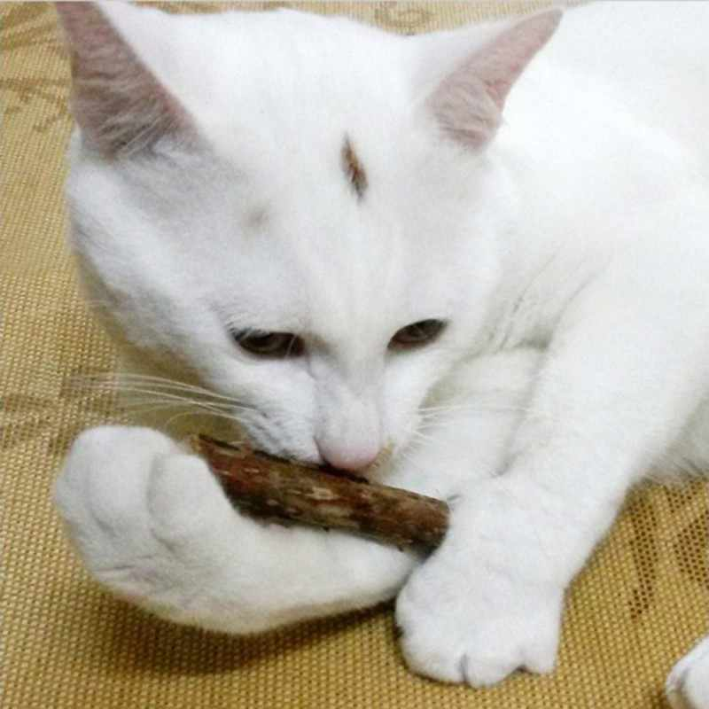 5pcs แมวสัตว์เลี้ยงแมวไม้ธรรมชาติ Catnip PET Cat ยาสีฟันยาสีฟัน Stick แมวทำความสะอาดฟันฟันแมวขนมขบเคี้ยวสัตว์เลี้ยงชุดอุปกรณ์