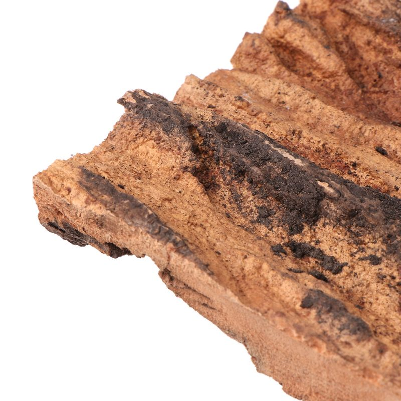 Champagne Cork Bark Reptile Breeding Box Pet Spider Hiding Climbing Supplies M0XD