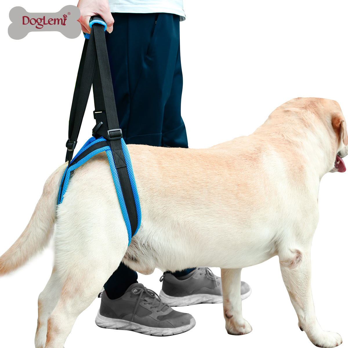 Pet Leg Walk Holder Protecting Band Hind Legs Disability Injured At Older Dog Stairs Auxiliary Belt Suspender Strap