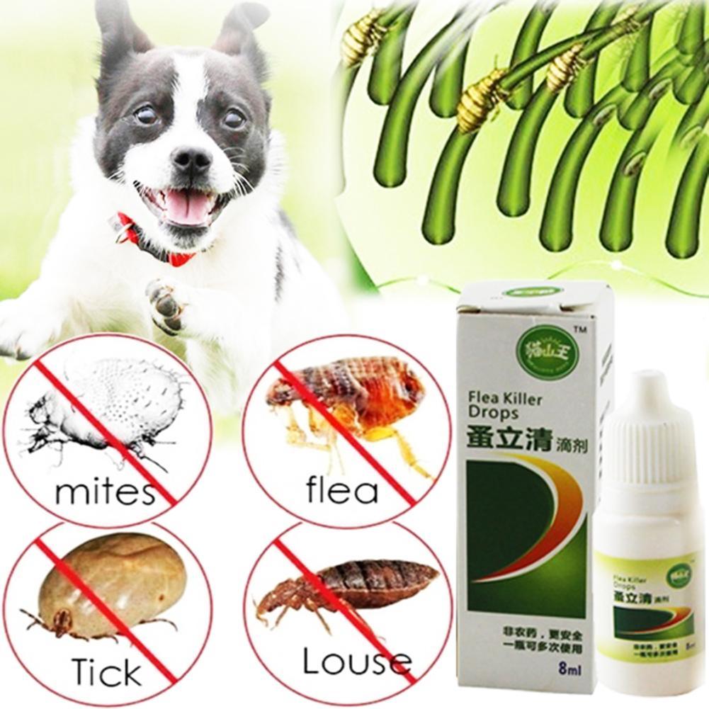 8ml Liquid font b Pet b font Dog Catss Insect Killer Spray font b Pet b