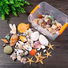 natural shell conch starfish landscape tank home decorations furnishings Crafts Aquarium Fish wedding decoration