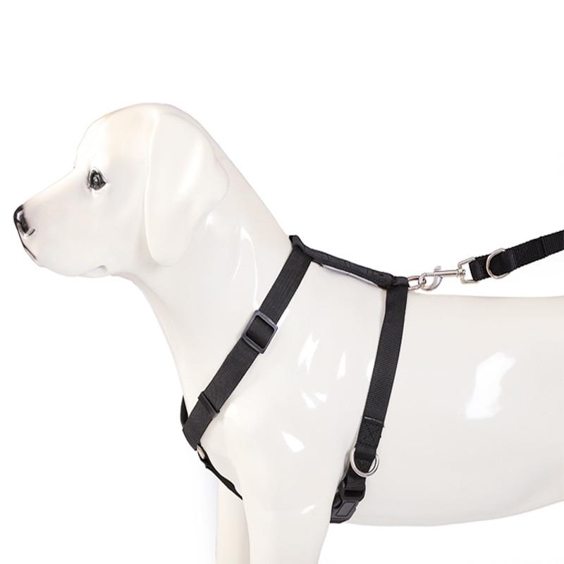 Pet Supplies Medium Large Dog Nylon Wear-Resistant Bite Resistant Hand Holding Rope Dog Neck Ring Dog Chain