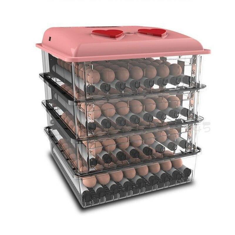 Mini Hatchery Automatic Turning Egg Incubator China Multi-functional Thermostat For Incubator Incubadora Couveuse 12V/220V