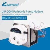 kamoer UIP ODM Peristaltic Pump Module